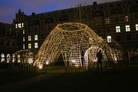 Vlechtwerk in de binnentuin van de Universiteit Antwerpen